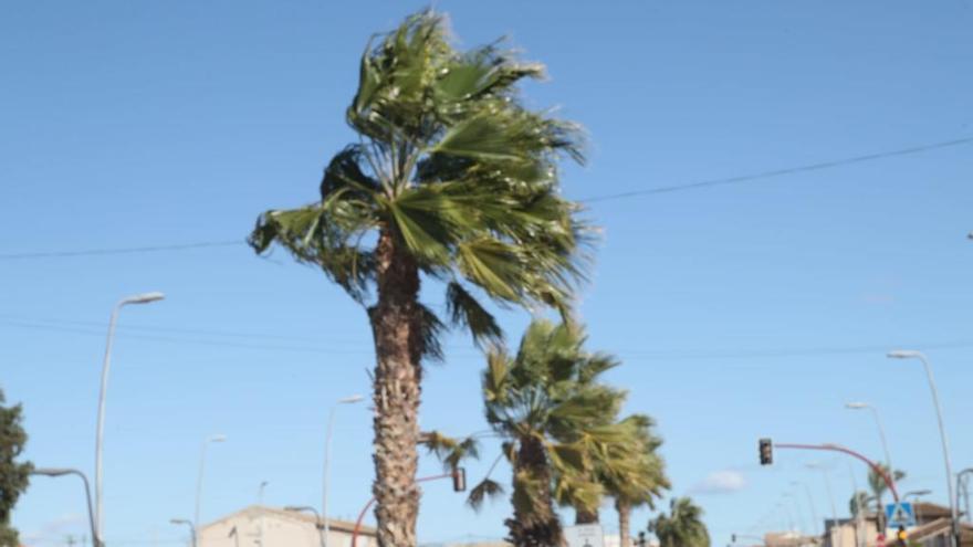 Alerta amarilla mañana en el Altiplano por fuertes vientos