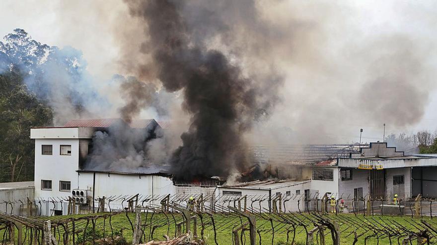 Un voraz incendio destruye una planta procesadora de bacalao en Ponteareas