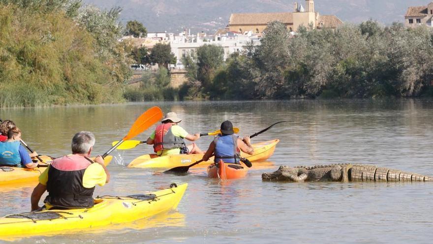 Kayak, yincanas, paseos y música para celebrar que Córdoba es Patrimonio Mundial
