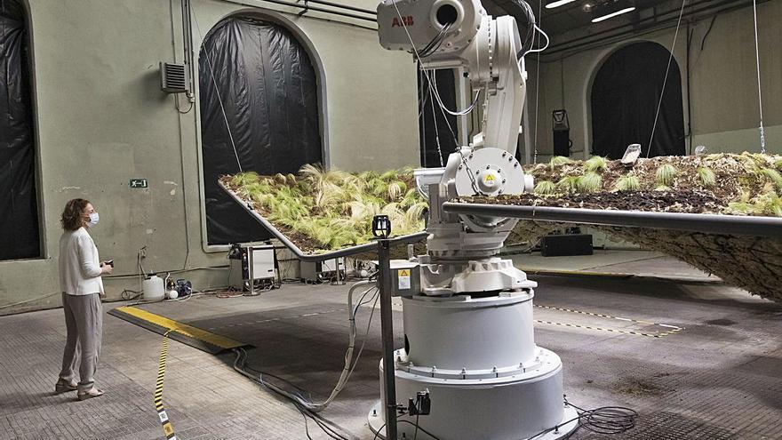 El robot más cooperante