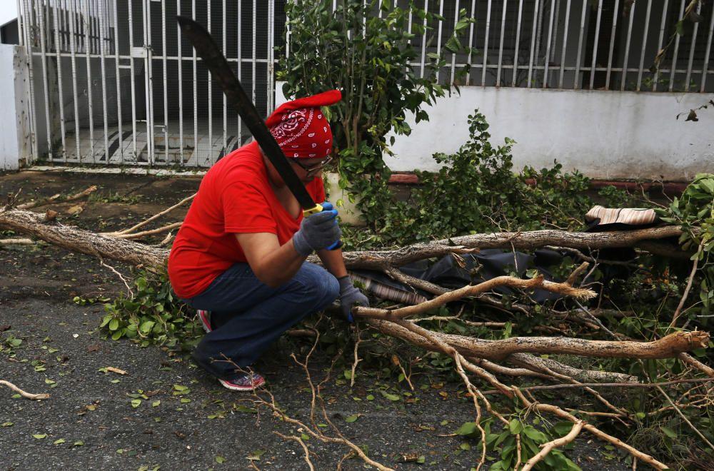 P.Rico trata de conocer la magnitud del daño ...