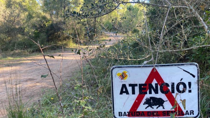 Unió de Pagesos demana batudes nocturnes contra el senglar a les comarques gironines