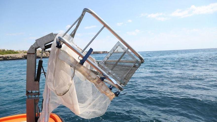 Reicher Fang für die Müllfischer von Mallorca im August