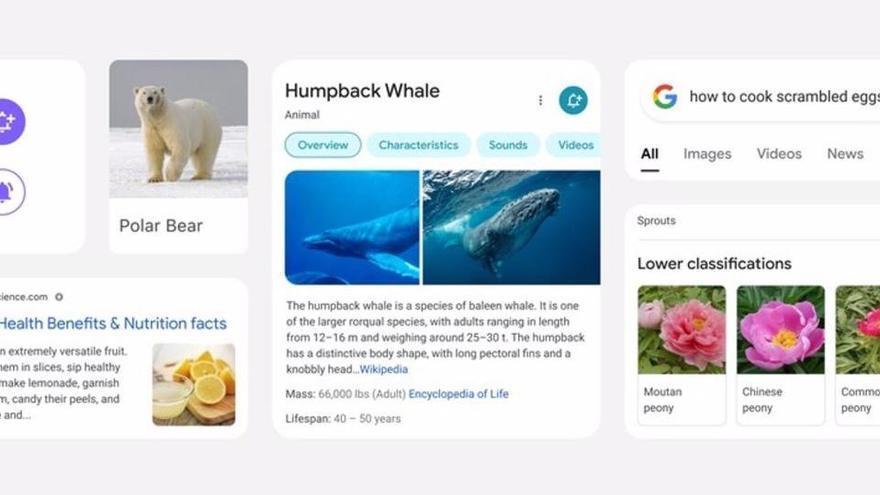 Així és el «nou» cercador de Google per a mòbils