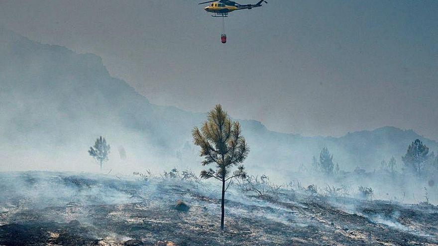 Atribuyen 11 incendios desde junio a un detenido que fue sorprendido plantando dos en A Teixeira