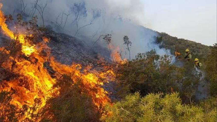 Los bomberos forestales irán  a la huelga tras el bloqueo  del Ministerio de Agricultura