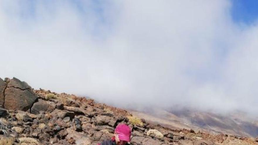 Investigación científica en el Teide con bolsitas de té