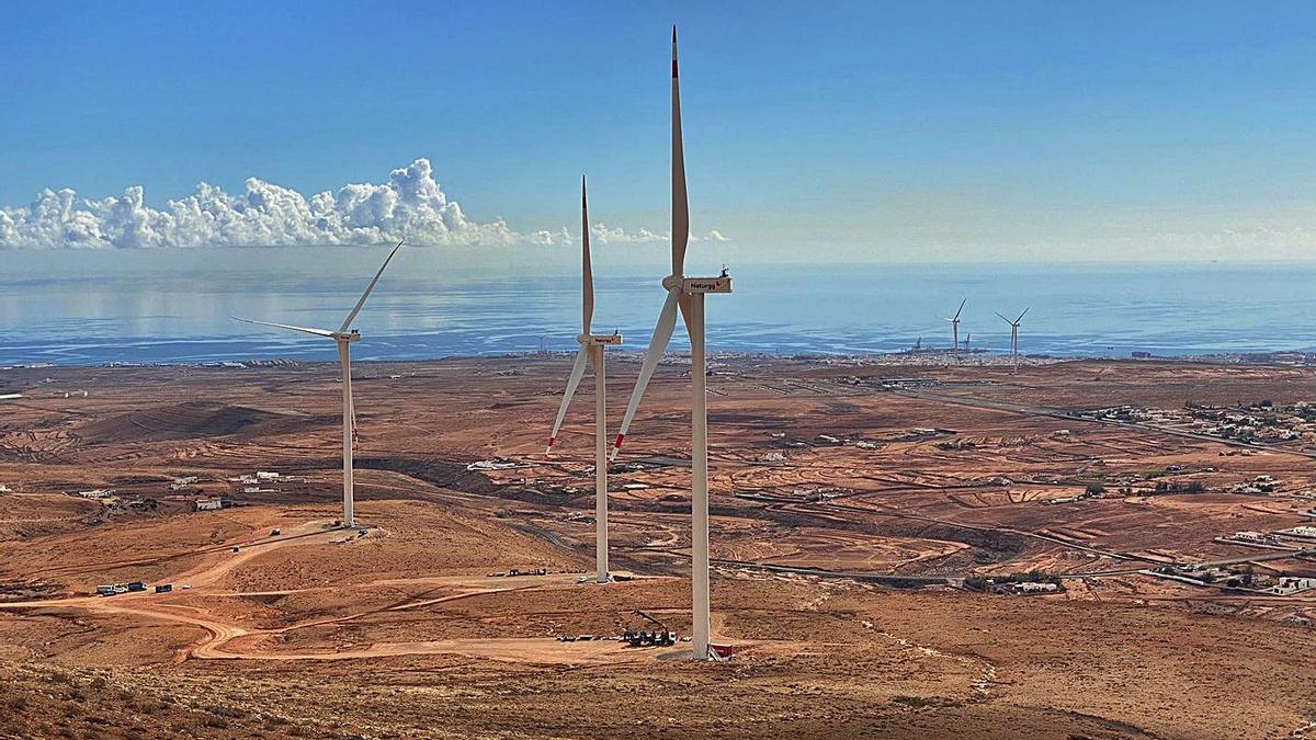 Algunos de los ocho aerogeneradores que conforman el Parque Eólico Puerto del Rosario. | | LP/DLP