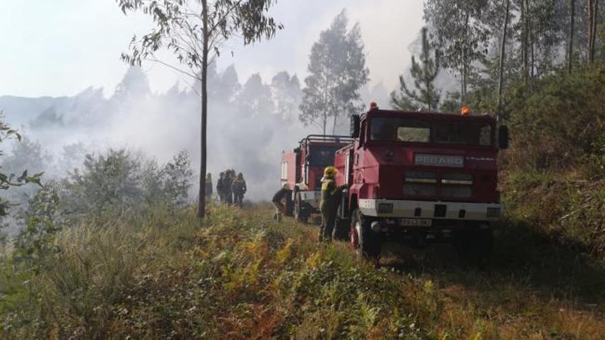 Medios aéreos y terrestres luchan contra un incendio en Cuntis