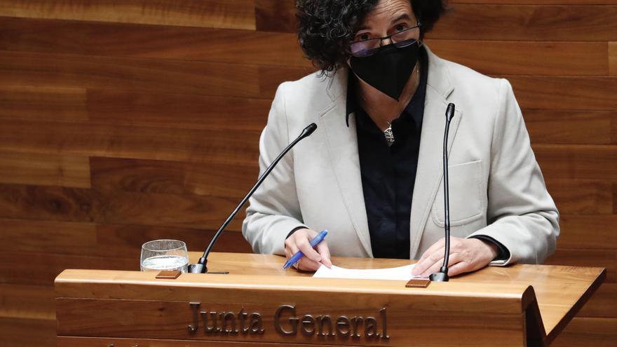 La Consejera de Cultura admite que se equivocó al confiar en el presidente de la Fundación Selgas