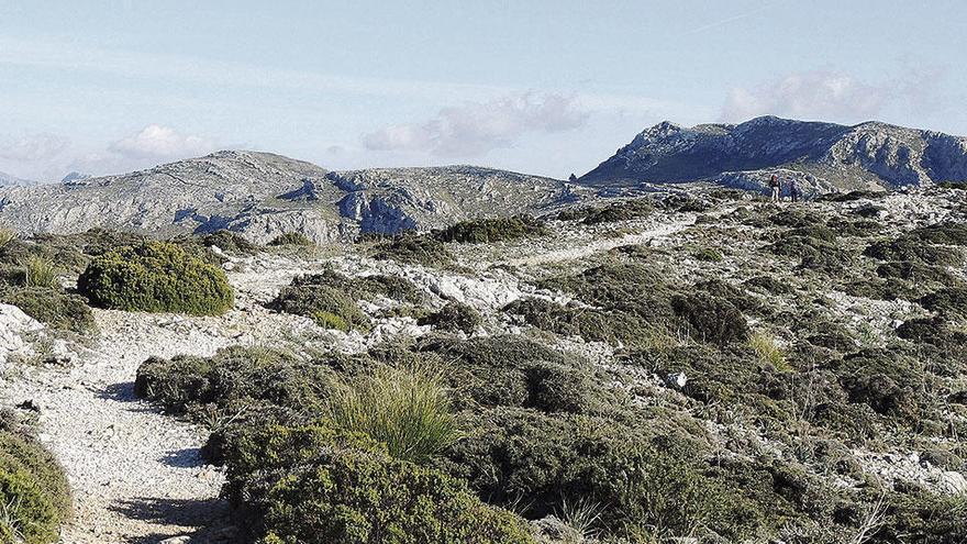 Wandern auf Mallorca: Auf den Spuren des Erzherzogs