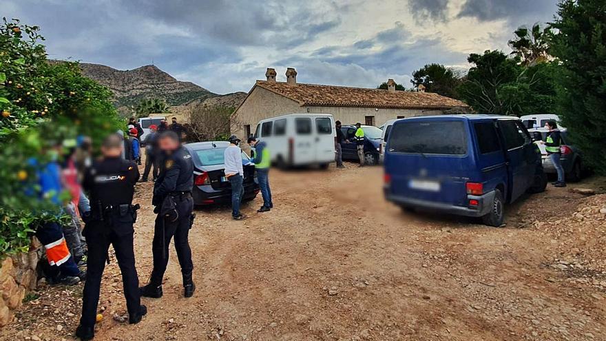 Abuso laboral en el campo de Torre Pacheco: 1 euro por caja y sin librar