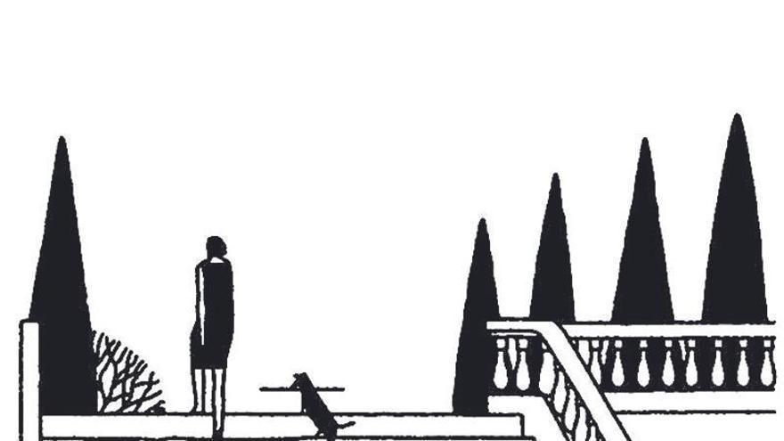 Foto fija de gato y perra