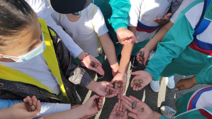 La Granja extiende su formación a estudiantes de FP