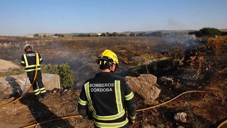 Incendio de pastos en Arroyo del Moro junto al IES Trassierra durante la madrugada