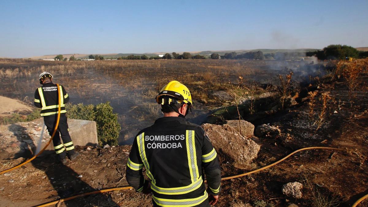 Los bomberos intervienen en el incendio de pastos declarado este miércoles por la tarde en las Quemadas, donde ardieron 10 hectáreas.