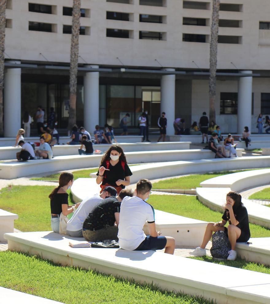 Universidad de Alicante   55 títulos para ser graduado de acreditada calidad