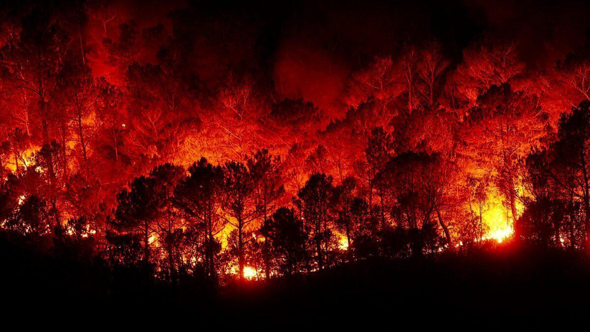 La Tierra en llamas: los incendios, cada vez más destructivos