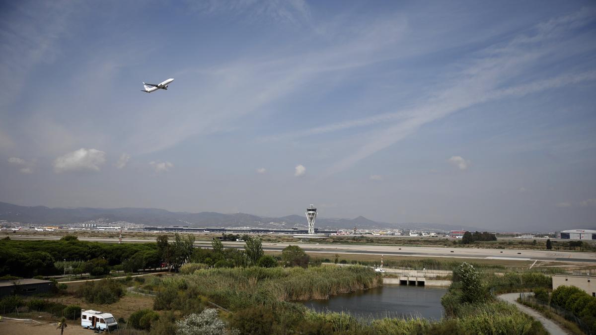 Un avión vuela por el espacio protegido de la Ricarda, en El Prat.