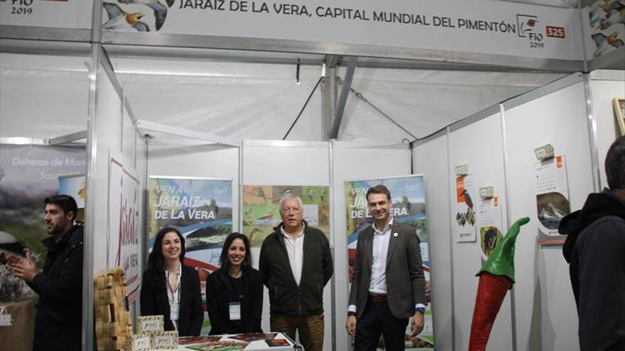 Jaraíz de la Vera difunde su colonia de cernícalo primilla