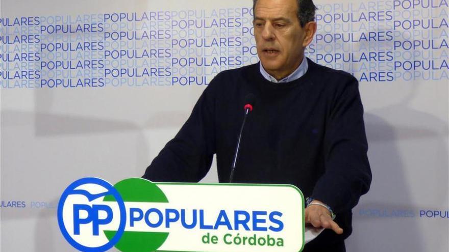 """El PP critica """"la doble vara de medir"""" del PSOE en el currículum de la alcaldesa"""