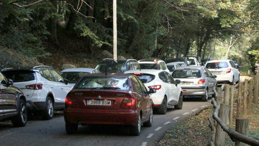 El Procicat aprova tancar els aparcaments de cinc parcs naturals quan estiguin al 75%