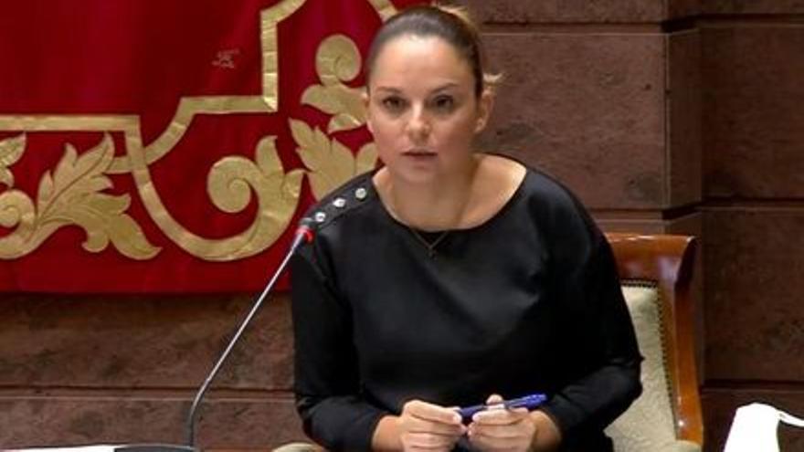 Suspendida la comisión parlamentaria sobre discapacidad al faltar dos diputados en la mesa