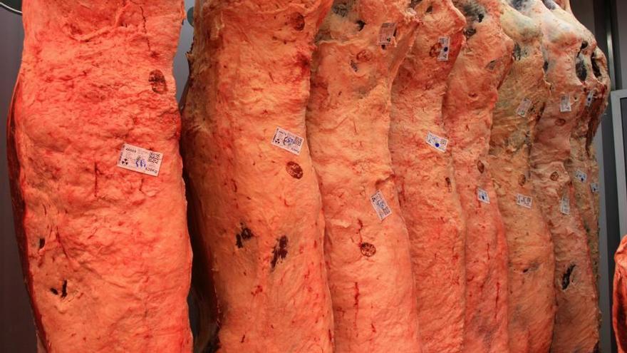 Frigoríficos Bandeira: Carne gallega de alta expresión