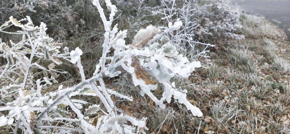 La boira gebradora al Solsonès a -2°C