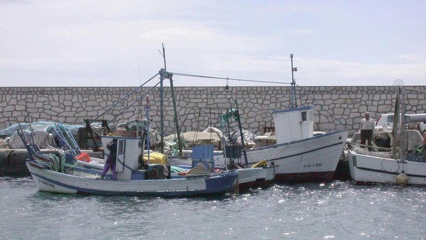 La cofradía de pescadores de Vélez, obligada a facilitar presupuestos, cuentas e informes de fiscalización