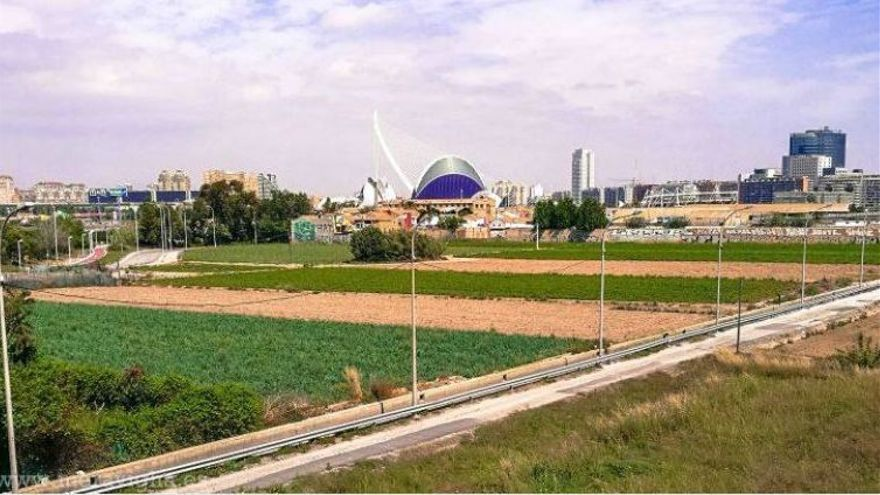 El ayuntamiento prepara un plan para recuperar la huerta en la ciudad