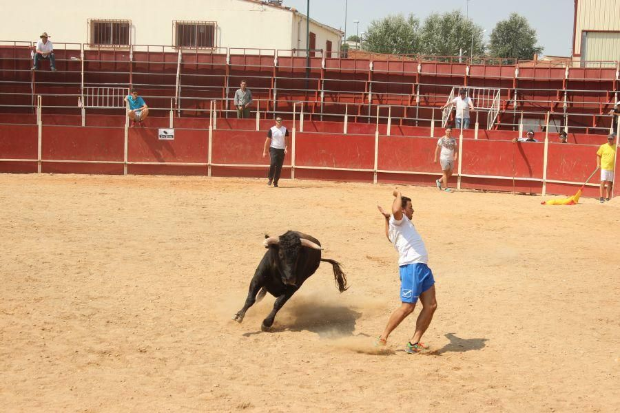 Fiestas en Zamora: Villamor de los Escuderos