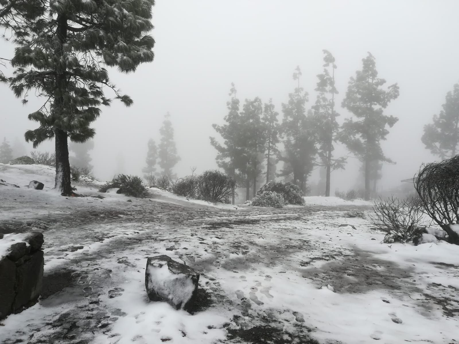 Nieva en Gran Canaria