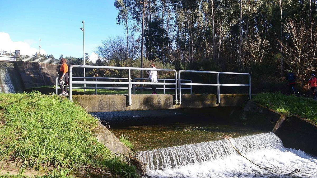 El embalse del río de O Con, en Castroagudín, prácticamente lleno.   | // NOÉ PARGA