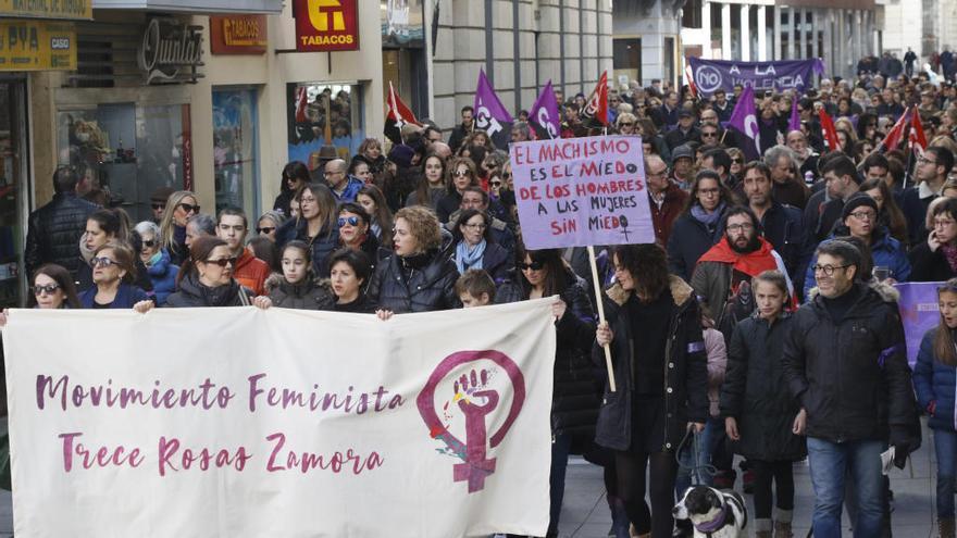 La asociación feminista de Zamora Trece Rosas durante una manifestación contra la violencia de género.