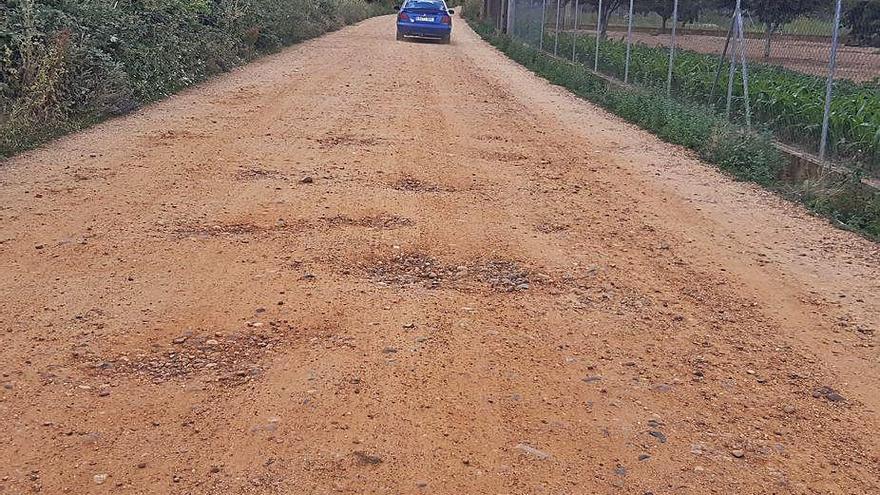 Medio Ambiente pide a la Junta que repare dos de las 9 vías pecuarias de Benavente
