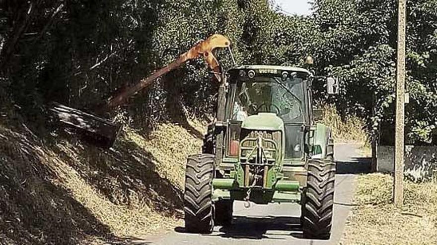 El nuevo adjudicatario inicia el desbroce de viales y parcelas en Culleredo, además de eliminar plumachos