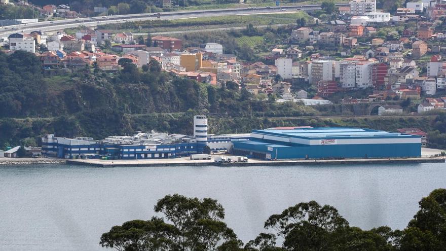 Nueva Pescanova propone una reducción de capital para compensar pérdidas