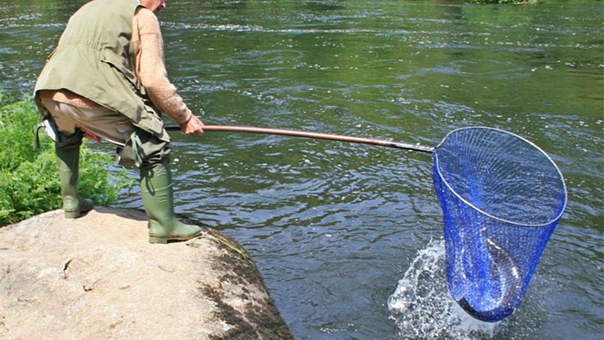 Río revuelto, ganancia de pescadores