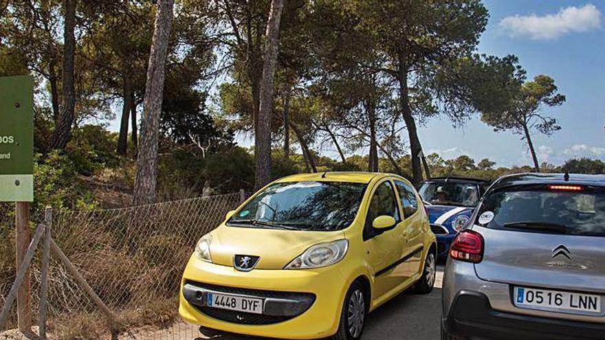 Umweltschützer wollen Parkplatz an Mallorcas Traumstrand verlegen lassen