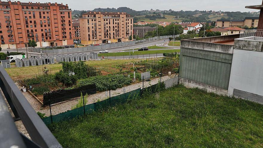Avilés sumará 21 huertos urbanos en Valgranda por la elevada demanda
