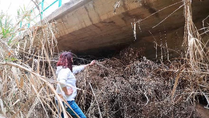 El Ayuntamiento asume la limpieza de La Carrasquilla en Atamaría
