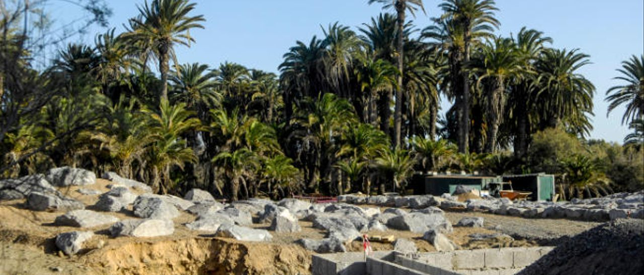 Tragsa concluye la reforma del parque Tony Gallardo y lo cuidará un año