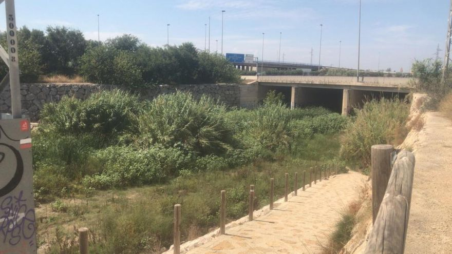 Catarroja exige a la CHJ la limpieza del Barranco del Poyo ante los riesgos por las lluvias