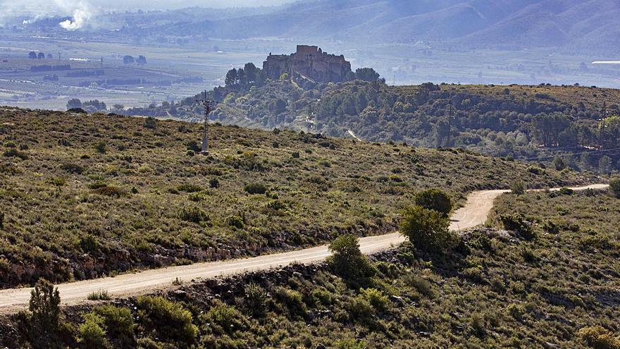 Cuatro universidades se posicionan contra la planta solar del Castell de Montesa