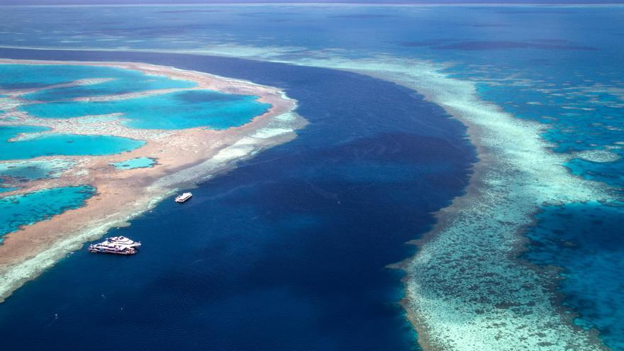 La Unesco valora la opción de declarar patrimonio en peligro la Gran Barrera de Coral
