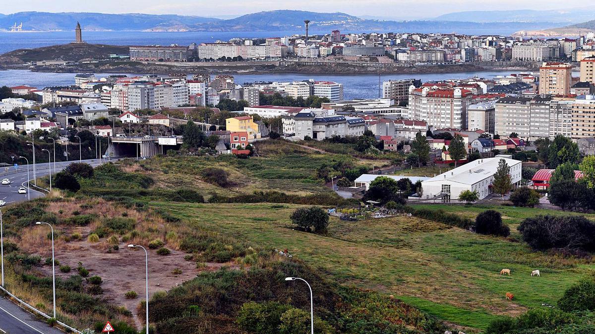 Vista de A Coruña desde una zona verde de San Pedro de Visma alejada de viviendas.     // VÍCTOR ECHAVE