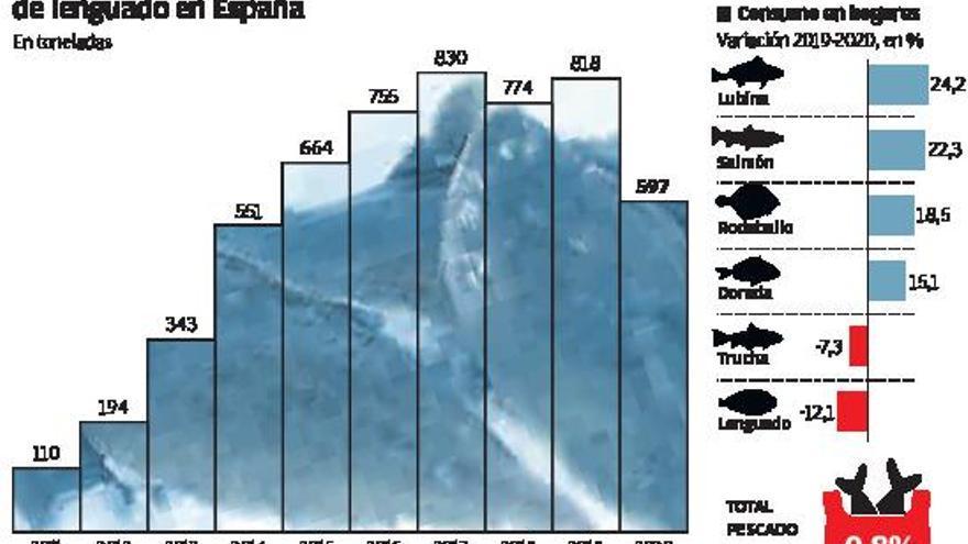 La granja de lenguados de El Musel cuadruplica la producción española