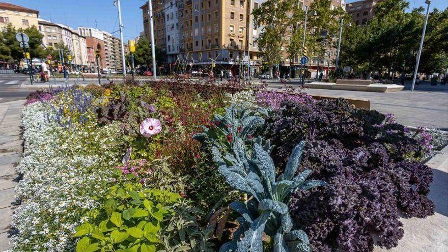 El Ayuntamiento de Zaragoza refuerza la vigilancia policial en parques y jardines tras detectar el robo de cientos de plantaciones
