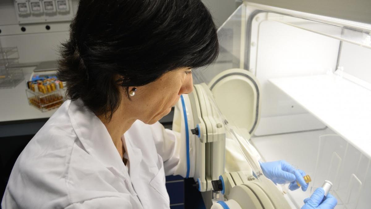 El Ministerio de Ciencia autoriza a la UPCT para hacer pruebas PCR